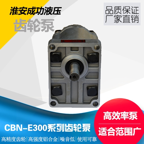 CBN-E300系列齿轮泵