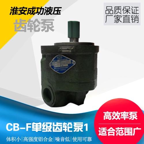 单级齿轮泵